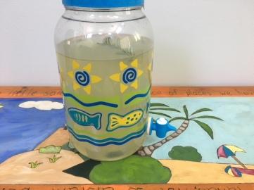 Rosemary Lemonade in a jar.