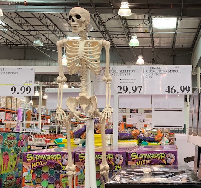 Scary Fun: My First Trip to Costco