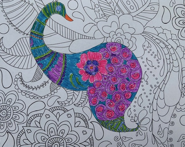 """Quieting the Mind"" with Coloring"