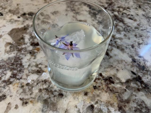 Lemonade with Blue Borage IceCubes