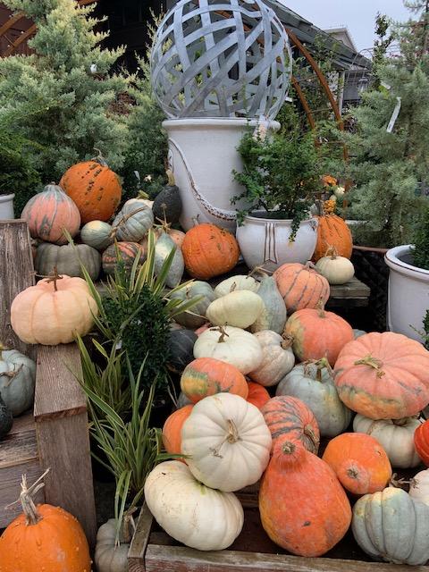 Scary October ErrandsList